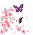 butterfly and sakura flower background imag vector image vector image