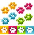Colorful Animal Paws vector image