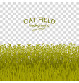 green oat field on checkered background vector image vector image