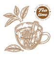hand drawn cup of tea herbal tea with cinnamon vector image vector image