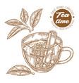 hand drawn cup tea herbal tea with cinnamon vector image