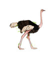 ostrich from a splash watercolor colored vector image vector image