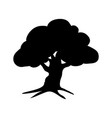silhouette oak icon tree flora vector image