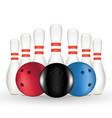 bowling and bowling pin vector image
