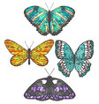 colorful set of hand-drawn butterflies vector image