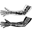 cybernetic hand with stencil second variant vector image vector image