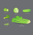 green vegetables design healthy natural vector image