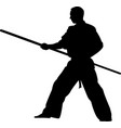 martial arts silhouette karate kick vector image