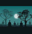 night at the cemetery vector image