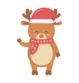 reindeer with scarf and hat decoration merry vector image vector image