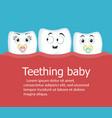 teething baby banner with teeth vector image vector image