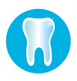 tooth icon in a blue circle vector image vector image