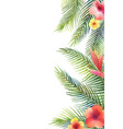 watercolor banner tropical leaves and vector image vector image