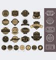 insignias set vector image