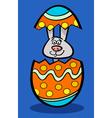 bunny in easter egg cartoon vector image
