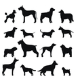 Dog breed black silhouette vector image vector image