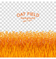 golden oat field on checkered background vector image vector image