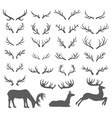 hand drawn sketch of deer horns vector image vector image
