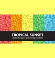 hexagon pattern set tropical sunset seamless vector image