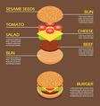 isometric burger ingredients infographic vector image