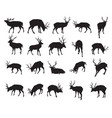 set deer silhouettes-2 vector image vector image