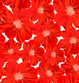 Small red flowers in a seamless pattern vector image