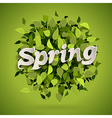 spring bomb vector image vector image