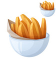 sweet potato fries detailed icon isolated vector image vector image