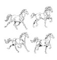 horse collection vintage vector image vector image