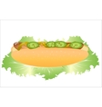 Hot dog with lettuce vector image vector image