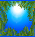 tropical palm trees frame over blue sunny sky vector image vector image