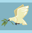 white dove with laurel branch in beak peace and vector image vector image