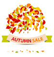 Abstract Autumn Sale with Leaves on White Ba vector image vector image