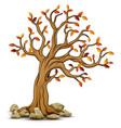 autumn tree with stones vector image
