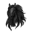 Black arabian racehorse sketch for equine design vector image vector image