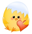 Chick with heart vector image