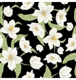 Christmas rose hellebore flowers pattern on black vector image vector image