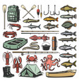 fishing sport equipment and fishes vector image vector image