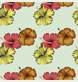hibiscus flowers background peas vector image vector image