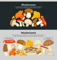 mushrooms of all species on internet promotional vector image vector image