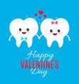 two loving teeth flat cartoon vector image vector image