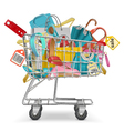 Trolley with Purchase vector image