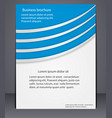 business brochure with elements lines vector image vector image