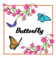 butterfly flower square frame background im vector image