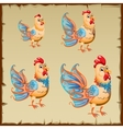 Cute yellow rooster with big blue tail vector image vector image