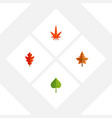flat icon leaf set of aspen hickory frond and vector image