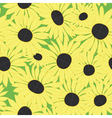 floral pattern with yellow sunflowers vector image