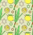 Sketch Sukkot pattern vector image vector image