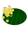 Beautiful Yellow Simpor Flowers on Banana Leaf vector image vector image
