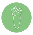 carrot fresh isolated icon vector image vector image